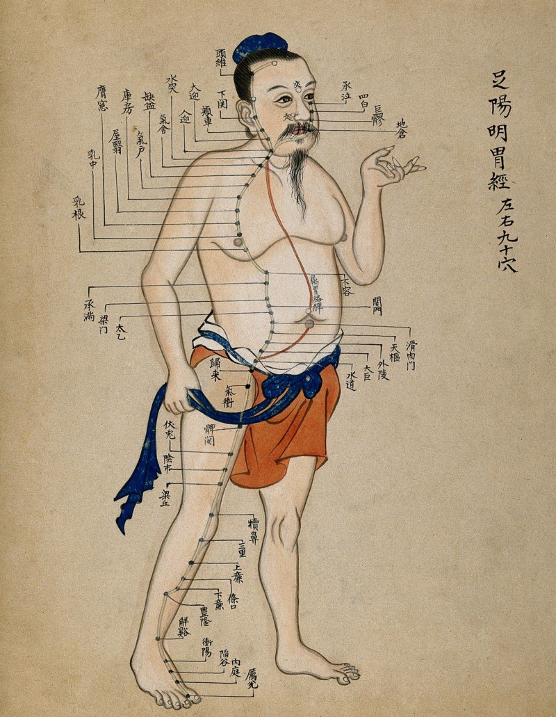 V0018499 Acupuncture chart with a series of points indicated on the Credit: Wellcome Library, London. Wellcome Images images@wellcome.ac.uk http://wellcomeimages.org Acupuncture chart - standing man facing right with acupuncture points.